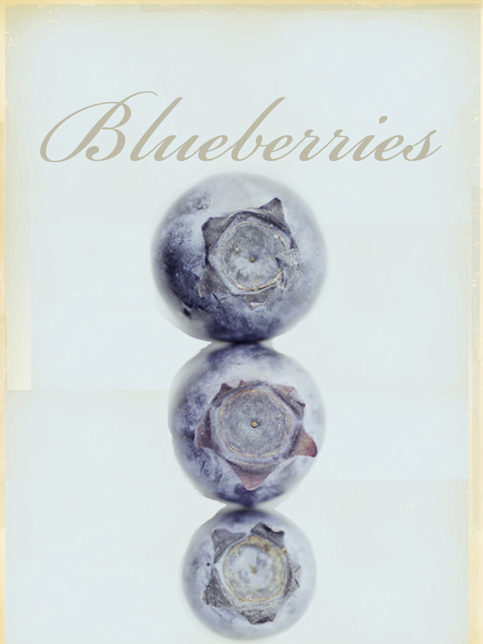 Illustration of bluberries by Richard Koci Hernadez