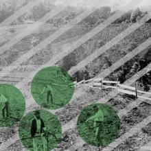 Pop art of farmworkers in a field