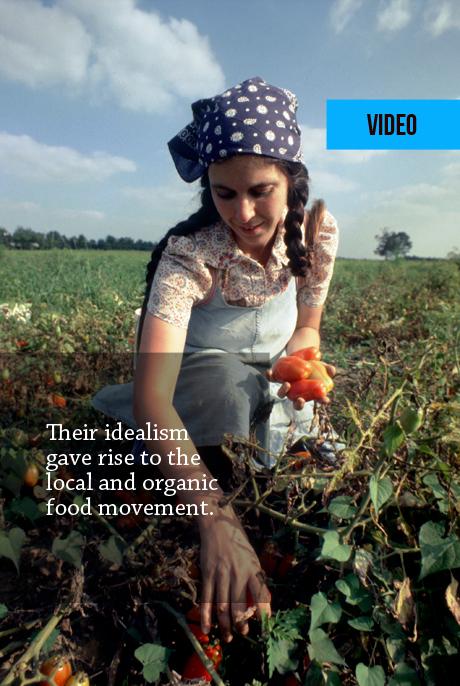 VIDEO: The Farm